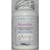 Picamilon (Cognitive Nutrition) 240 capsules